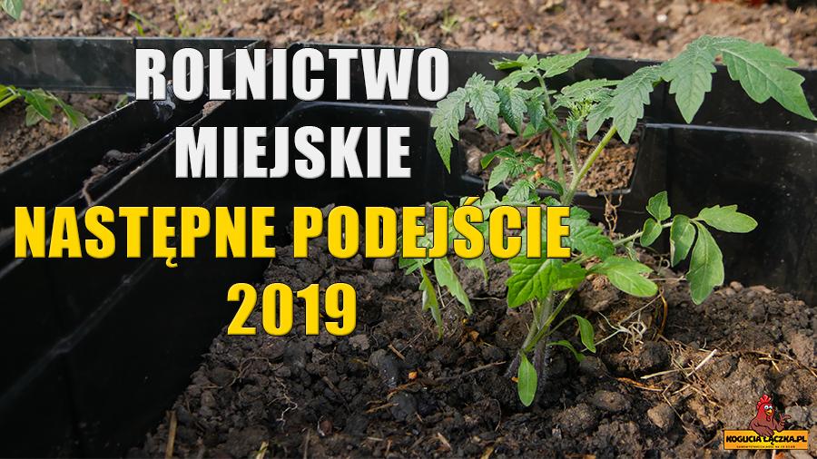 Rolnictwo miejskie drugie podejście 2019