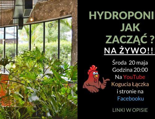 Hydroponika Jak Zacząć ? Transmisja LIVE