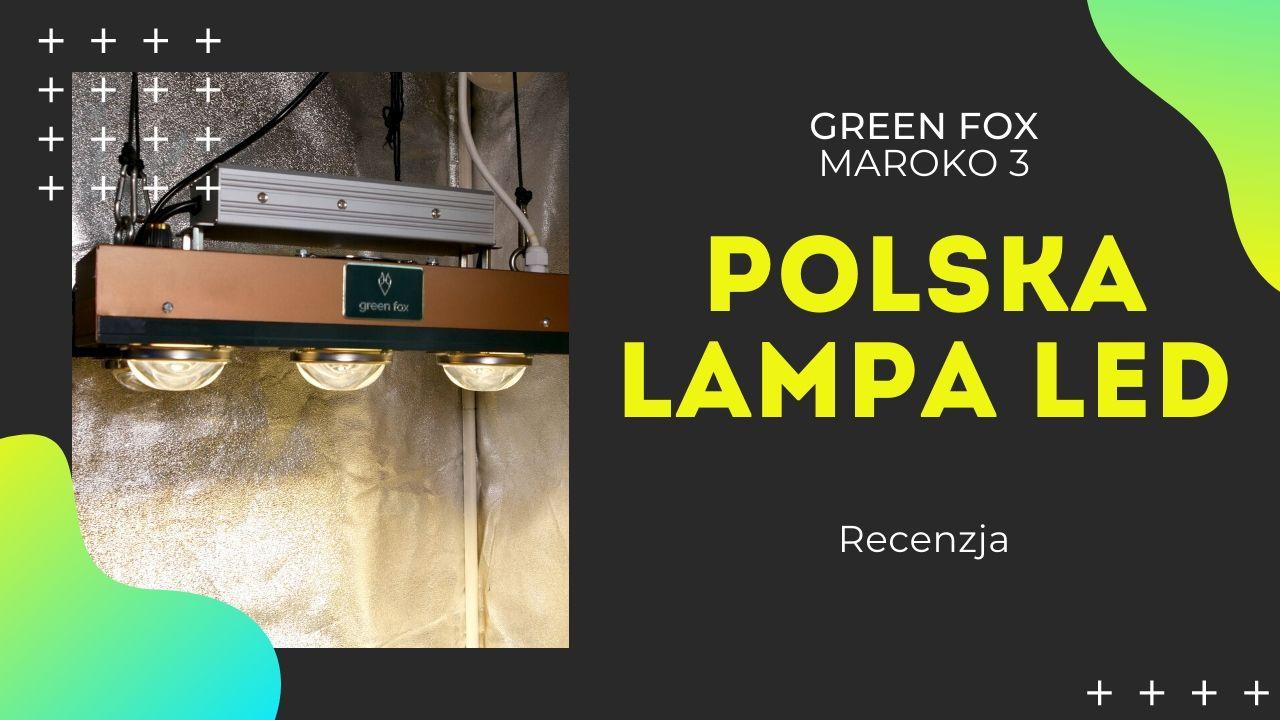 Recenzja Polskiej lampy led Green Fox Maroko 3