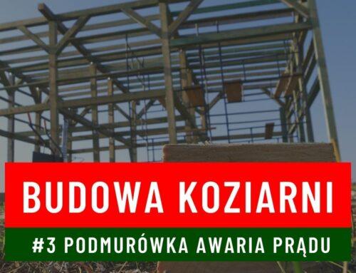 Budowa koziarni #3 Podmurówka Zasilanie off grid