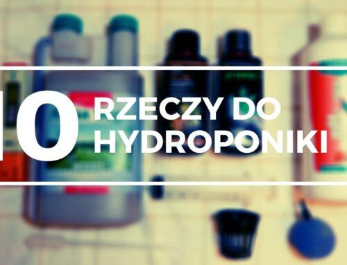 Hydroponika Lista rzeczy jak zacząć